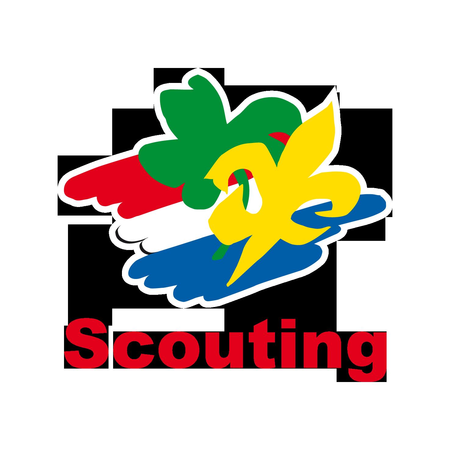Afbeeldingsresultaat voor scouting