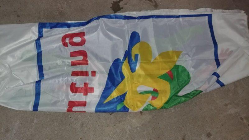 Scoutingvlag, zeer groot formaat Image